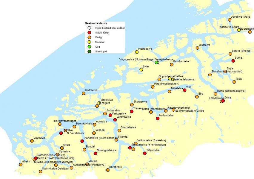 Illustrasjon sjøaurebestand i Møre og Romsdal